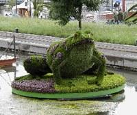 Топиари — Садовая скульптура (делаем своими руками)