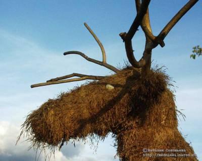 Скульптуры из сена(соломы) и травы своими руками